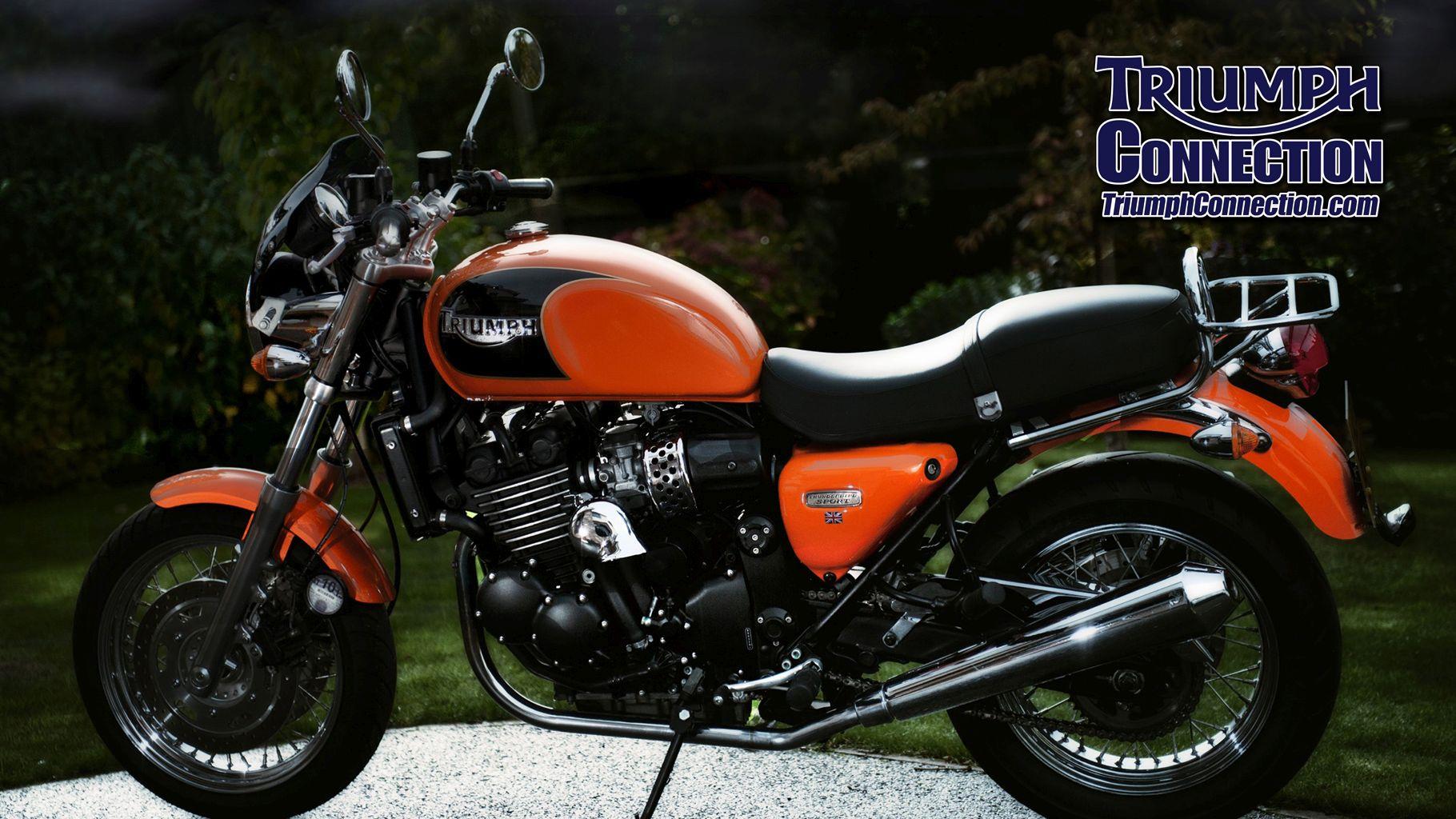 Triumph Motorcycle 650cc Primary Chain Tensioner Blade Rebuild Kit